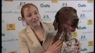 Crufts 2008 Young Kennel Club Stakes Winner