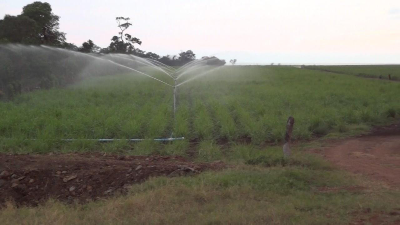 Sistema de riego por aspersi n en ca a de az car youtube for Sistema de riego por aspersion para jardin