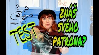 Jaký je Tvůj PATRON na Pottermore? 🐠x🐬x🕊️ Pozor na MOZKOMORY / TEST / Harry POTTER / IceQueen Easy