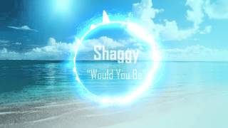 Shaggy  - Would You Be ft. Brian Thompson