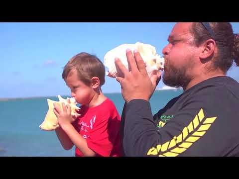 Pacific Aha Punana Leo Hawaiian Language Program