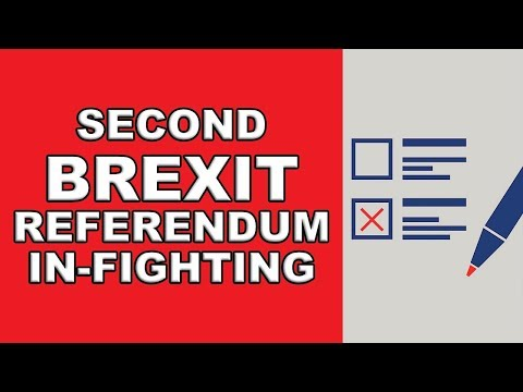 Second Brexit Referendum Infighting!