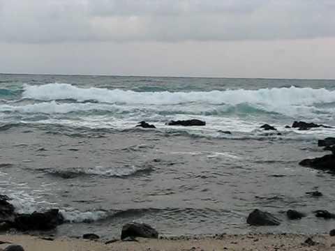Sandy Beach Ocean Dusk Meditation
