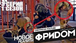 Реалити ФРИДОМ | 3 СЕРИЯ 1 СЕЗОН | Дойка на спор | Скандал | СЭМ | АИДА |