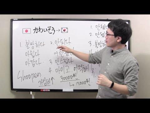 かわいそう 韓国 語