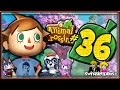Animal Crossing New Leaf  Part 36 GROUNDS KEEPER MAN!