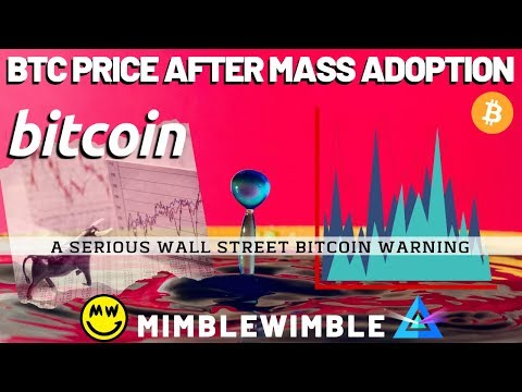 BTC Price After MASS ADOPTION | What is Mimblewimble? Winklevoss Twins Bitcoin News
