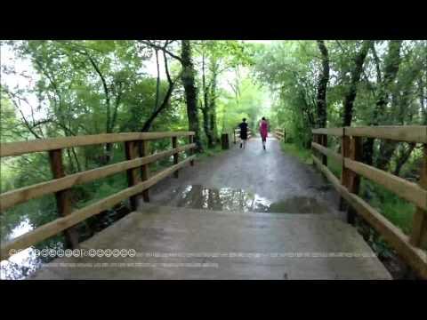 Virtual run  5 M  7 5 Km 9 km/h Etang Saint Nicolas France