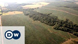 Bodenerosion weltweit - Ursachen und Lösungen | Global 3000