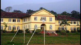 Breaking News!   Buea: At least 20 Injured in School Attack!