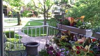 How To Secure Planter Baskets To Balcony Railings