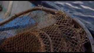 Ставим Иж - приспособление для ловли рыбы. Рыбалка. Россия. Архангельская область. Мезенский район.(Иж – приспособление для ловли рыбы, внешне похожее на рюжу, но меньше размером(http://www.1553.ru/projects/azap/page45.htm)..., 2016-04-12T17:32:33.000Z)
