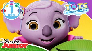 T.O.T.S | All You Need Is Love 💙 | Disney Junior UK