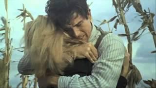 Бонни и Клайд   (Bonnie and Clyde)