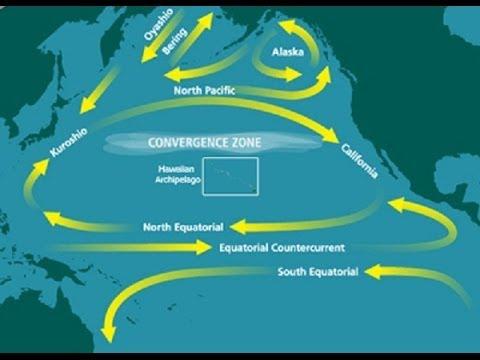 ☢ Fukushima fallout should the West Coast be concerned ☢