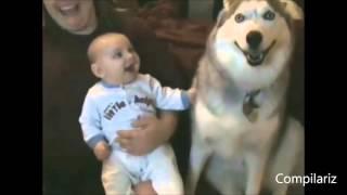 Собаки - верные помощники малышей