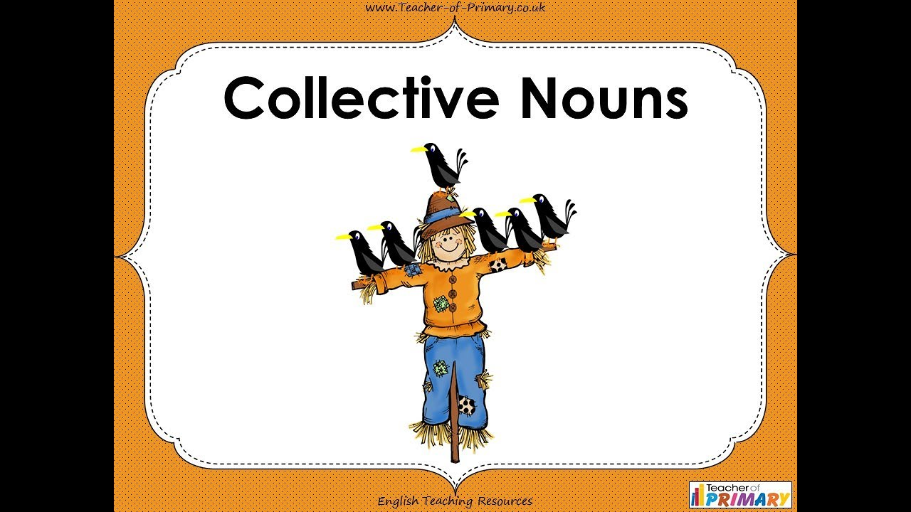 medium resolution of Collective Nouns - YouTube