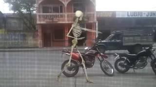 Video El baile de la huesuda leni download MP3, 3GP, MP4, WEBM, AVI, FLV Agustus 2018