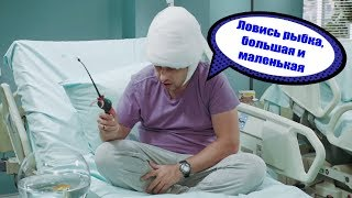 День медика - как аквариумные рыбки вылечили больного? Здравоохранение в шоке! | Дизель студио