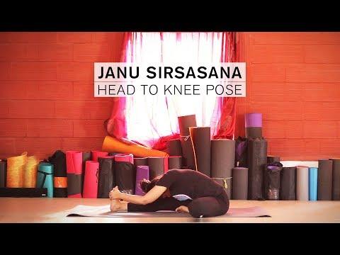 How to do Janu Sirsasana Head to Knee Pose
