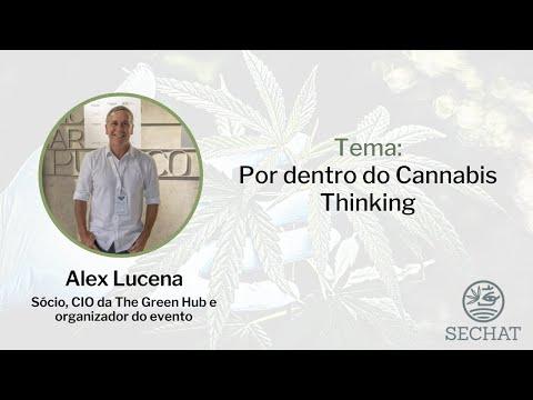 Por dentro do Cannabis Thinking