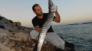 Thug life  barracudas fishing extreme spinning Popper Yozuri