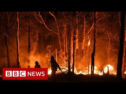 Australia fires: Rain brings relief but huge blazes expected – BBC News
