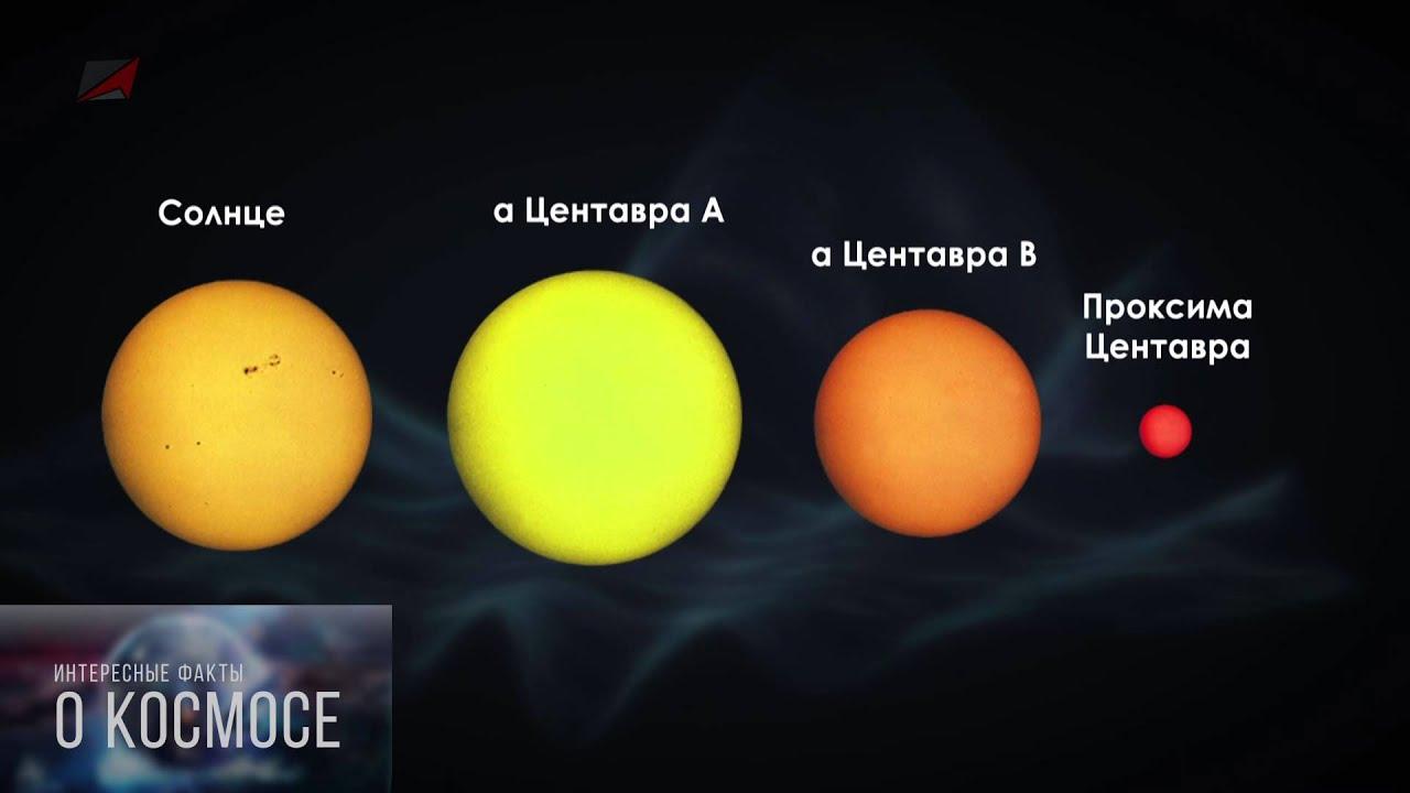 БЛИЖАЙШАЯ ЗВЕЗДА К СОЛНЕЧНОЙ СИСТЕМЕ. Факты о космосе.