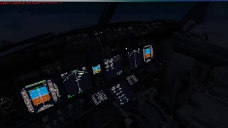 Microsoft Flight Simulator 10