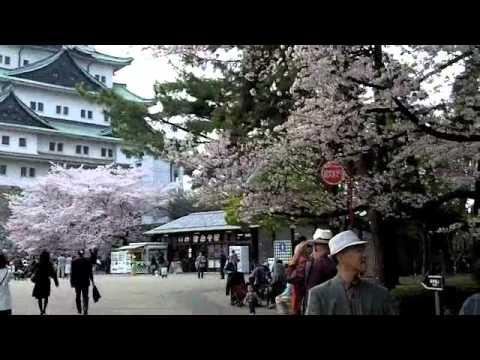 Japan - Day 2 - Hanami, Nagoya & Karaoke
