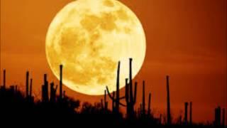 Moon (Luna)-Bianca Nava & Los Genuinos