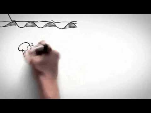 Vídeo explicativo sobre Dolor Crónico