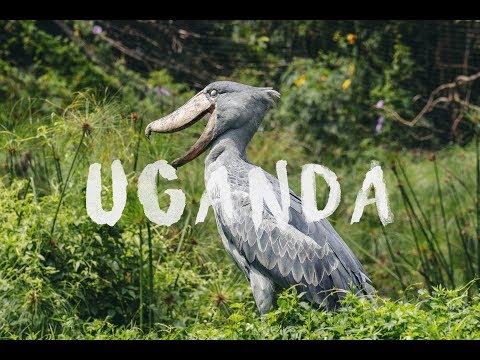 Go Travel - 【UGANDA】