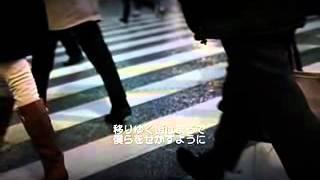 ソング: さくら Quci: 太郎森山ストレート 歌手:手ダオクイ 僕らはきっ...
