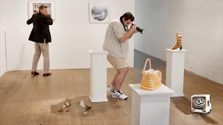 Ultimate Photographer Fails Compilation Best Hilariously Awkward WEDDING PHOTO FAILS