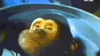 Acen - Trip II The Moon (full video)
