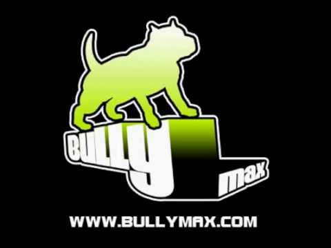Dog Muscle Building Supplement Featuring Pit Bulls Bully ...