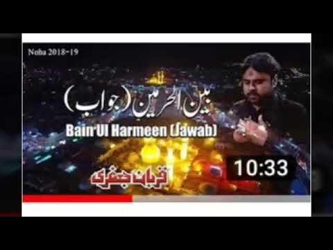 Qurban  jafri new nohy 2019/hik pason qabr masoma di thumbnail