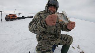 Рыбалка Дело Клёвое Ловля Окуня со Льда оз Сартлан