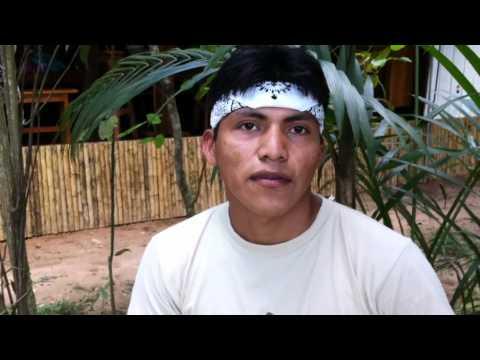 Amazon Jungle Adventure Guide: Enzo