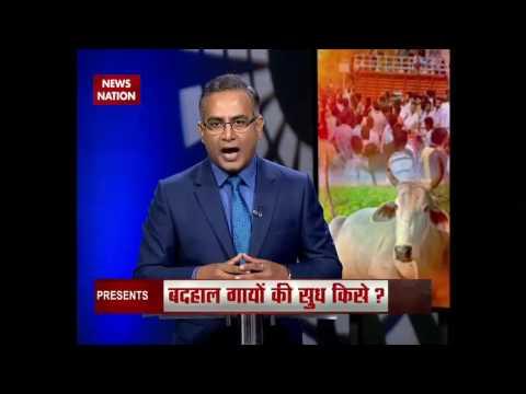 Question Hour: Rajasthan man dies after cow vigilantes beat him up in Rajasthan's Alwar