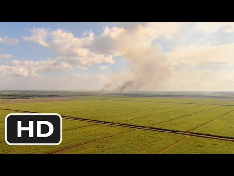 The Harvest (2011) Official HD Trailer