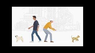 Аверия.Поиск пропавших домашних животных