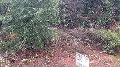 Land for Sale in Florida by Owner
