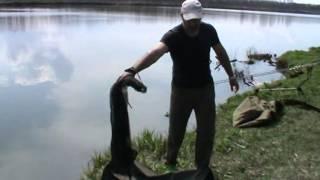 Обзор рыболовного снаряжения для карпифишинга от Aquatic Часть 2