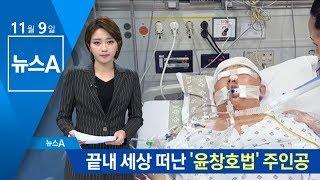 끝내 세상 떠난 '윤창호법' 주인공 | 뉴스A