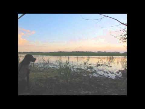 Sept 12 Shoal Lake