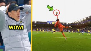 Edouard Mendy - Impossible Saves 2021/2022 - HD