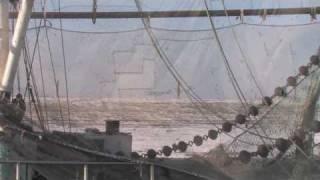 Wurster Nordseeküste - Wremen Kutterhafen
