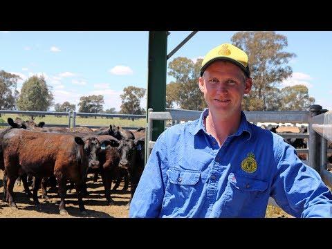Graham Centre and Angus Australia student intern Jack Shultz